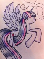 Princess Twilight Sparkle by RainbowCrash33