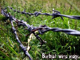 Barbed Wire Veins by Marroon