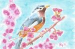 Watercolor Bird by TheGirl-WhoCouldDraw
