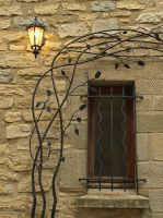 Vines, Light and Window by AgiVega