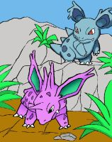 nidorino and nidorina by tarripin