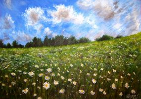 Among the daisies by EvgenyAverin