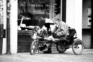 Man`s best friend by jfphotography