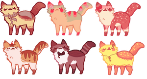 cat adopts! open