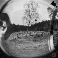 Past is Present I by FilipR8