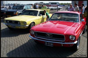 1968 Ford Mustangs by compaan-art