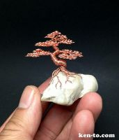 Root on rock wire bonsai tree by Ken To by KenToArt