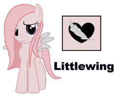 Littlewing by iPandacakes