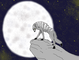 Under the Moon by x-HuntersWolves-x