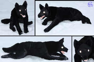 Black dog-plushie by IsisMasshiro