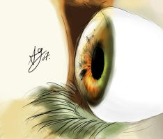 :EYE:: by turis2gutz