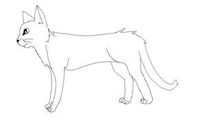 Free cat lineart by Silvy-Fret