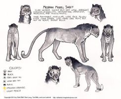 Meoran Model Sheet for Ratha Graphic Novel by rathacat