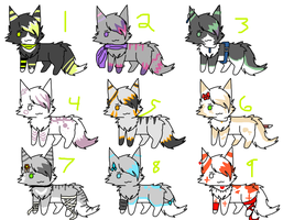 Kittycat adopts by Icey-adopts
