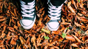 Converse in fall. by Magical-B