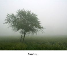 Foggy Song by AuTuMnS0NG