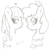WildFire n ForestSpirit by xXcrusader-helperXx