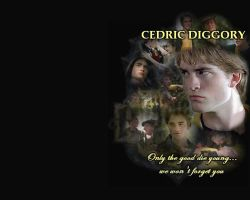 Cedric Diggory: we wont forget by Valdemar-poe
