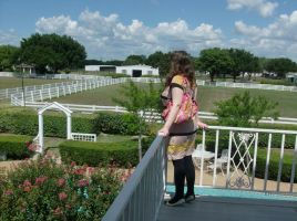 Looking Over J.R.'s Balcony At Southfork Ranch by Millerkatrina28