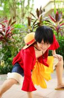 One Piece, Monkey D. Luffy: The King by cure-pain