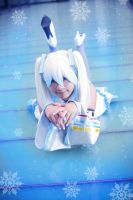 Snow Miku by yinami