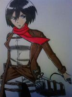 Aot - Mikasa Ackerman by Ticker360