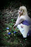 alice in wonderland: 13 by cainess