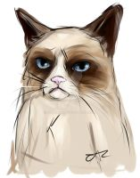 Grumpy Cat by AluraRB