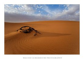 Desert by waleed-DP