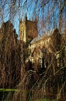 St. Andrew's, Through Birch Curtain by EarthHart