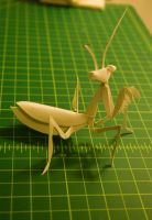 Mantis by mouse2cat