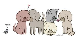 One Direction Puppies by milamint