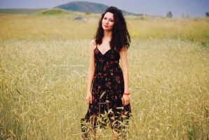 summer field by anastasia-lapteva