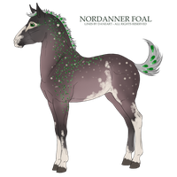 Tsonian Foal by Dollyrawr