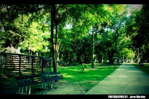 Ang Bench by Delinquente