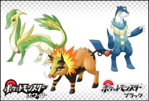 Pokemon GenV Starters by LuupY