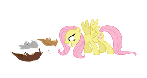 Fluttershy : You WILL Love Me by ShadyHorseman