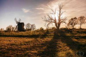 Haunted Windmill by Dapicture