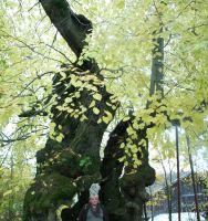 Ingeline and the 1000 years old tree by ingeline-art