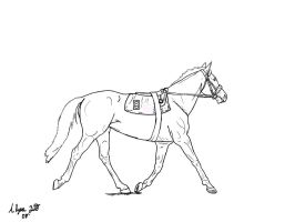 TB Race Lines- Contest by FsuEquestrian