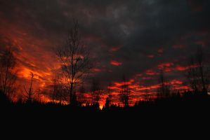 Sky on Fire by nnicaaa