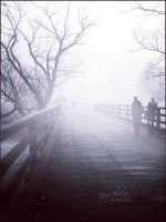 Into the Mist by groby