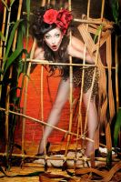 Comtesse Lea pin up woman in cage by TheComtesseLea