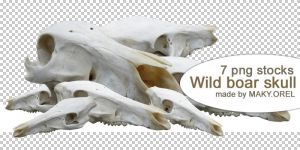 PNG STOCK SET: Wild boar skull by MAKY-OREL