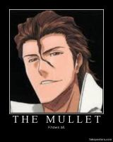 Aizen's Mullet Knows All by Ichi-BanOtakuSML8500