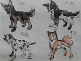 Adoptable Dogs by PennyShiroKiba