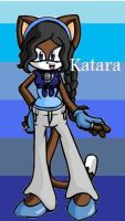 Katara.....THE CAT by gamergrl