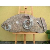 ammonite in stone by Museumwinkel