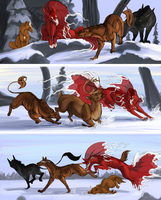 Finas and Bears PT Trials by KJfromColors