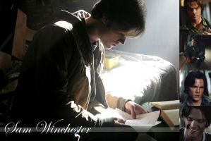 Sam Winchester Wallpaper by raefalcon